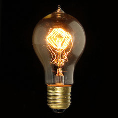 E27 40W A19 Vintage Antique Edison Incandescent Bulb Clear Glass 110V