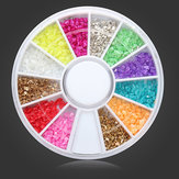 12 kleuren Shell Powder DIY Nail Art Decoratie Wheel