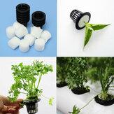 黒いプラスチックメッシュポット水耕栽培Aeroponic植物は、ネットガーデンフラワークローンを成長させる
