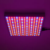 1200W LED Grow Light Waterproof Plant Lamp Chip Phyto Growth Lamp Full Spectrum Plant Lighting for Indoor Plant - US Plug