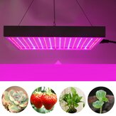AC85-265V 60W 289 LED Grow Light Growing Lamp For Veg Flower Indoor Plant