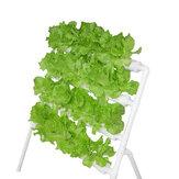 نظام الزراعة المائية آلة زراعة الشرفة 110-220 فولت 36 فتحة 4 أنابيب رف زراعة الخضروات أنبوب الزراعة بدون تربة
