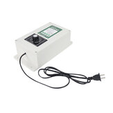 110V 2000mg/1000mg/500mg Ozone Generator Air Water Sterilizer Purifier Fruits Tool