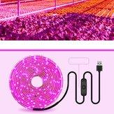 Lumière de croissance de plante à spectre complet USB avec 5V bande de lumière de croissance de plante de commutateur 2835 bande de lumière de plante à spectre complet