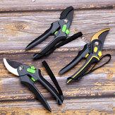 Przycinanie nożyc Nożyce Narzędzia ogrodnicze Oszczędność pracy Nożyczki stalowe Zakład ogrodniczy Oddział