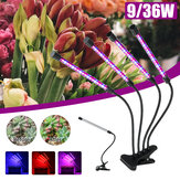 LED Plant Growth Light 5-speed Dimming Timing IP67 Waterproof USB Full Spectrum Clip Plant Light