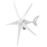 Turbinas de viento de 400W 3/5 cuchillas 12V / 24V con controlador de carga Generador de viento Energía doméstica
