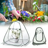 غطاء نباتات الدفيئة المصغرة البلاستيكية القابلة للطي للحديقة الدافئة ضد للماء واقي النباتات 31.20x27.30 بوصة