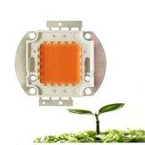 20W 30W 50W 30mil Full Spectrum LED wachsen Chip DIY für Indoor Plant DC12-14V