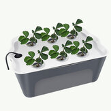 Household 6 Holes Hydroponic Vegetable Seedling Box Soilless Cultivation Equipment Automatic Artifact Flowerpot