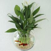 Acrylic Aquarium Fish Tank Wall Mounted Hanging Plant Pot Grow Vase Home Decor