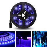 5M 3528SMD Non-waterproof UV Ungu LED Strip Light dengan DC Connector DC12V
