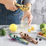 Stainless Steel Lemon Juicer Orange Press Squeezer Handmade Juice Extractor Hand Press Fruit Juicer
