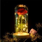 赤いバラが装飾の美しさを魅了保存赤フレッシュローズガラスカバー付き