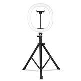 MZ-10 Luz de preenchimento telescópica integrada dobrável de 10 polegadas 3 modos de luz 10 nível de brilho ajustável LED luz circular para fotografia Maquiagem YouTube Vlog TIK Tok