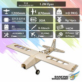 DW Dancing Wings Hobby T12 Balsawood 1200mm Wingspan Light Wood Electronic RC飛行機KIT / PNP