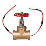 配水管ランプのためのワイヤーが付いている型のSteampunk 3/4インチの停止弁ライトスイッチ