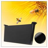 4L Plástico Dentro Bee Alimentador de Colmeia Quadro Tipo Alimentação de Água Bee Ferramentas de Manutenção Definido Para Mel Bee