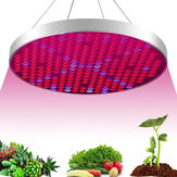 AC85-265V 35W UFO 250LED Grow Light Full Spectrum Growing Lamp for Indoor Plants Flower Seeding Hydroponic Greenhouse