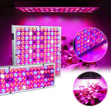 LED Grow Light Hydroponic Full Spectrum Pianta da fiore Fioritura Bloom lampada 85-265V