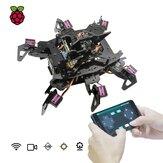 Adeept® RaspClaws Hexapod Örümcek Robot Kit, Rasperry Pi 4 Model 4B / 3B STEAM Tarama Robotu OpenCV Hedef Takibi Video İletimi