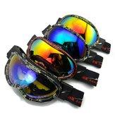 Lunettes de ski anti-brouillard de galvanoplastie équipées de lunettes de ski imperméables imperméables au vent