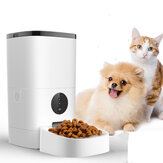 6L Pet Feeder Wifi-afstandsbediening Smart Automatic Food Feeding met oplaadbaar