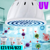 E27 E14 B22 UV Germicidal Lamp Disinfection LED Bulb Sterilizer Light for Home Hotel Indoor Use 220V