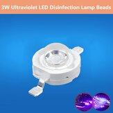 3W Pionowe perełki lamp o dużej mocy Dezynfekcja LED Wysoka jasność