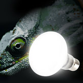 E27 25W 40W 60W 75W 100W UVA Light Bulb Reptile Pet Terrarium Brooder Heater Lamp AC220-240V