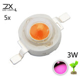 5 sztuk ZX 3W Full Spectrum Plant Growing DIY Lampa LED Chip Garden Greenhouse Seedling Lights