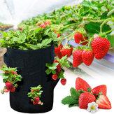 10 galloni che piantano fragole Borsa 43L 8 tasche che piantano sacchetto in tessuto vasi per fragola pomodoro carota contenitore di verdure con manici