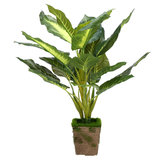 Artificial Planta Evergreen Flower Garden Boda Fiesta DIY Pot Home Office Decoraciones