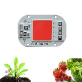 LUSTREON AC160-260V 20W 30W 50W Full Spectrum COB LED Grow Light Chip for Indoor Plant Flower