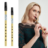 NAOMI Tin Whistle Penny Whistle High C Key Brass Whistle Six-holed Woodwind Instrument For Beginner Whistler