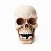 Cráneo Cabeza Montado en la pared Gancho Resina Esqueleto en forma de llave de utilidad Almacenamiento Ganchos