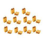 10 Paare XT30 2mm goldener weiblicher weiblicher Schnittstellenstecker