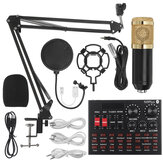 LEORY N9 Professional Sound Card + BM800 Recording Condenser Microphone kit with Shock Mount