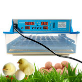 Mini Automatic Egg Incubator intelligent Turning Temperature Control for Poultry