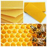 30 पीसी हनीकॉम फाउंडेशन मधुमक्खी शहद मोम फ्रेम्स वैक्सिंग मधुमक्खी पालन उपकरण मधुमक्खी शहद कंघी