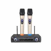 Système de microphone sans fil RITASC U28 LCD Ensemble professionnel KTV pour la maison