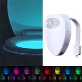 8 Color Changing Motion Activated Sensor LED USB Charge Toilet Night Light Human Body Induction