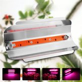 50W LED Full Spectrum Plant Flower Grow Light Waterproof Lodine Tungsten Lamp AC185-265V