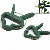 20pcs Plant Tied Buckle Clamp Support Garden Plant Support Vines Grape Clip Fastener Vegetables Flowers Clips