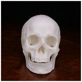 Crâne humain décoration à la main Goth Halloween Decor cadeau Souvenirs ornement