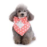 الحيوانات الأليفة الرسمية بووتي الكلب القط الحيوانات الأليفة قابل للتعديل القوس العلاقات والياقة