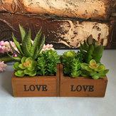 LOVE Cuenca de madera Desktop Lotus Plantas suculentas Planta de flores Jardín Bonsai