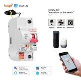 Tuya Smart Life 10A-125A 1P WiFi Smart Circuit Breaker Overload Short-circuit Protection Works with Alexa Google Home