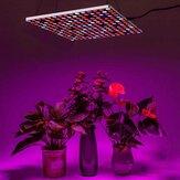 Трансформируемая форма LED Grow Light Лампы для выращивания 85-265V Полный спектр 10-уровневый регулируемый таймер включения и выключения Растение
