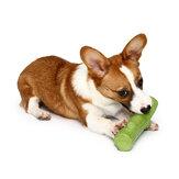 Güzel Şube Katı Molar Giyilebilir Pet Oyuncakları Köpek Balıkçılık İstihbarat Geliştirme Köpek Oyuncaklar